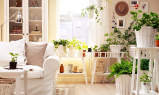 Evde Canlı Çiçek Dekorasyonu