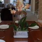 salonda çiçek dekorasyonu